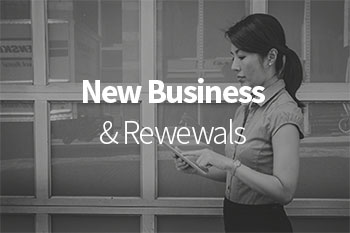 New Business and Renewal roles